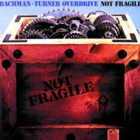 Cover zu Not Fragile