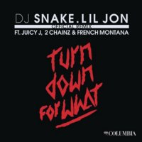 Cover zu Turn Down For What (Remix)