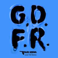 Cover zu GDFR