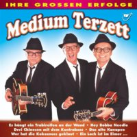 Cover zu Englands Swingers